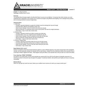 Blue Belt Stripe 3 Detailed Lesson Printouts