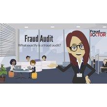 Fraud Audit (3:30)